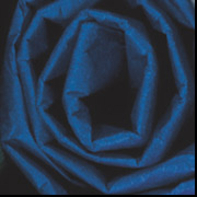 "20"" x 30"" Royal BlueTissue Paper 480 Sheets/Case"