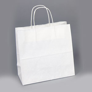 10 x 5 x 10 White Shopping Bag