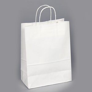 10 x 5 x 13 White Shopping Bag