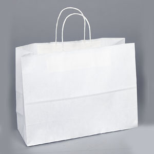16 x 6 x 12 White Shopping Bag
