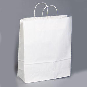 16 x 6 x 19 White Shopping Bag