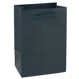 "8 x 4 x 10"" Hunter Green Matte Laminated Shopping Bags 50/Case"