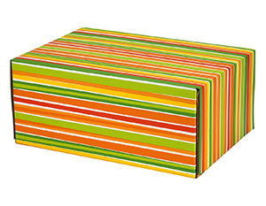 "Bright Stripes Decorative Self Seal Shipping Boxes 9 1/2"" x 6 1/4""x 3 3/4"" 24/Carton"