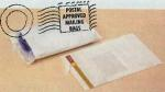 2 Mil. White Opaque Poly Mailing Bags (Bag Size: 9
