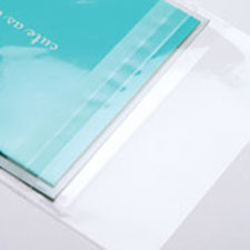 Protective Closure Clear Bags