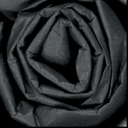 "20"" x 30"" Black Tissue Paper 480 Sheets/Case"