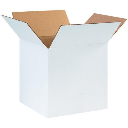 10 x 10 x 10 White R.S.C. 25/Bundle