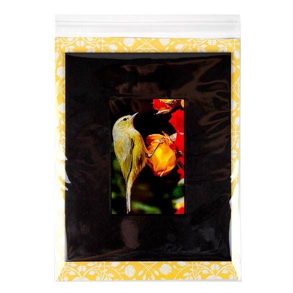 """8 15/16"""" x 11 1/4"""" + Flap, Crystal Clear Bags (100 Pieces)"""