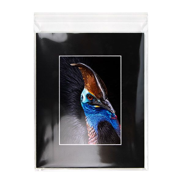 "8 7/16"" x 10 1/4"" + Flap, Premium Eco Clear Bags (100 Pieces)"